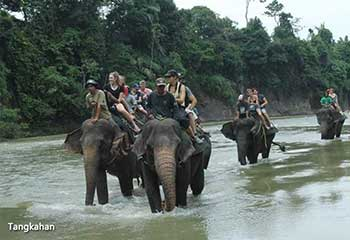 north-sumatera-soft-advantures-indonesia-tour-packages