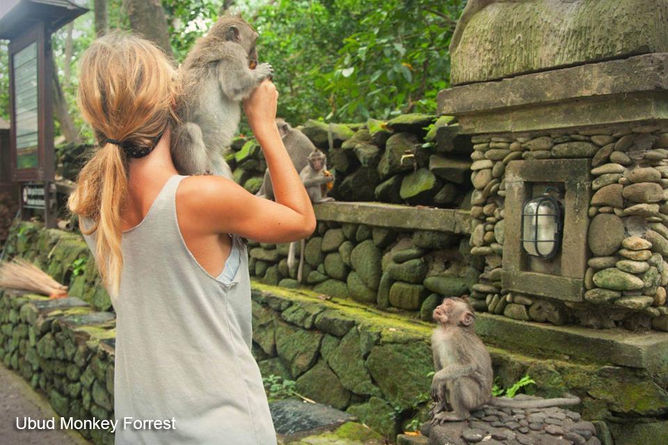 ubud-monkey-forrest-ubud-tour-bali